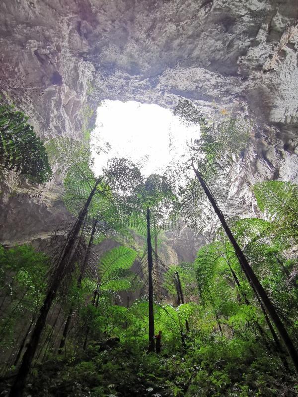 广西发现19个天坑组成的天坑群,目前北回归线以南最大