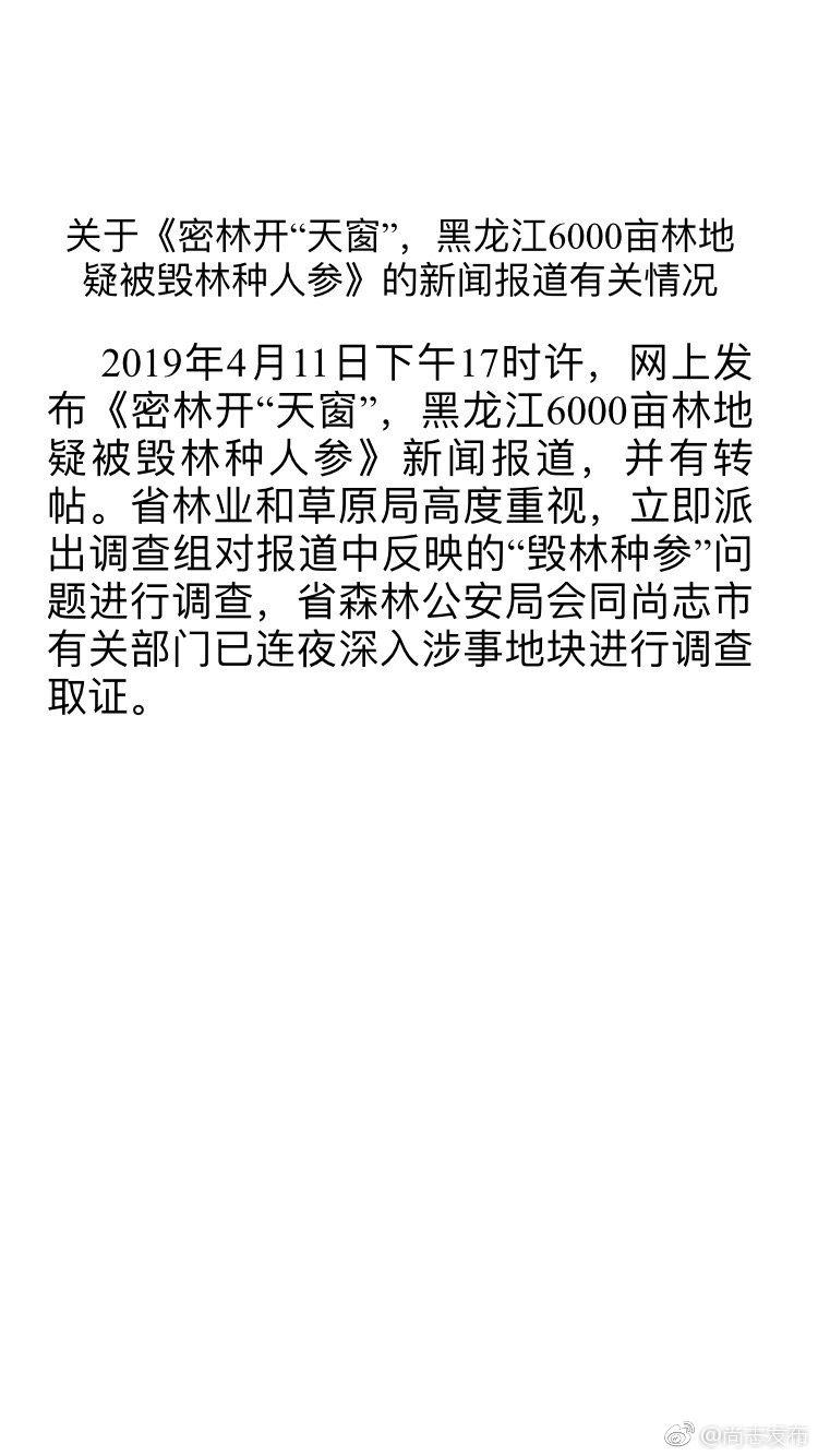 黑龙江六千亩密林疑被毁种人参 官方:已成立调查组