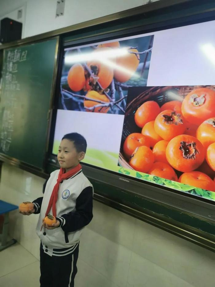 """""""柿柿""""如意——济南市师范路小学采摘节开始啦"""