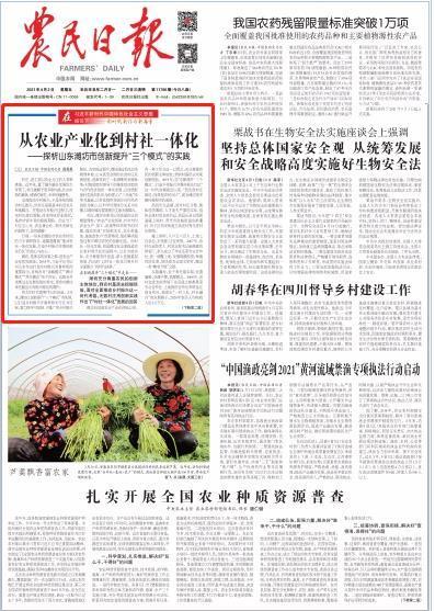 """从农业产业化到村社一体化丨探析山东潍坊市创新提升""""三个模式""""的实践"""