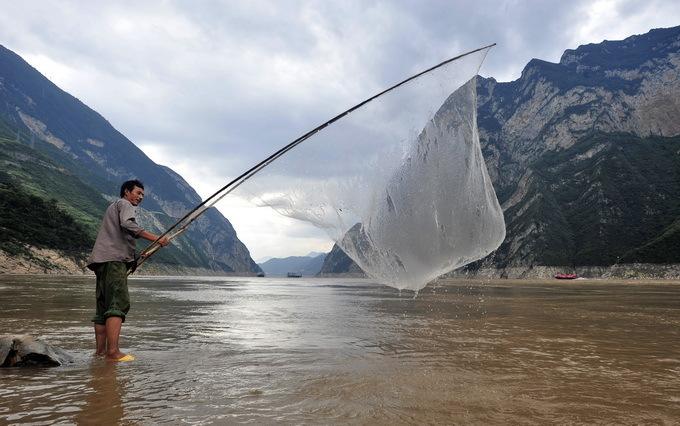 2020年1月1日起,长江十年禁渔,让长江鱼好好休养生息