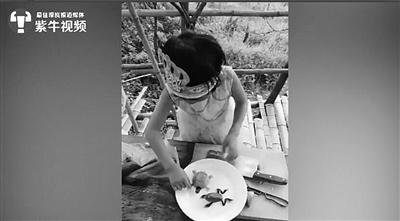6岁女童切菜摆拼盘攒40万粉丝 她的视频让网友落泪