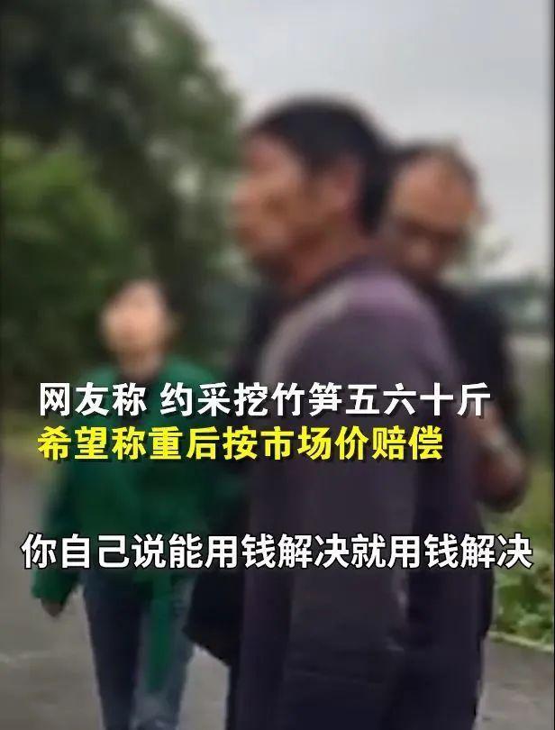 官方通报游客私挖竹笋:损失1000斤以上,赔偿1500元