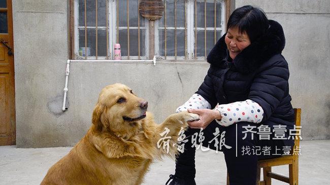 """嘉祥63歲""""我是趙姐"""":從屯子網紅到扶貧達人"""