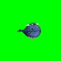 怒海霸主礼包:从外观光环到武器宠物 全方面分析性价比