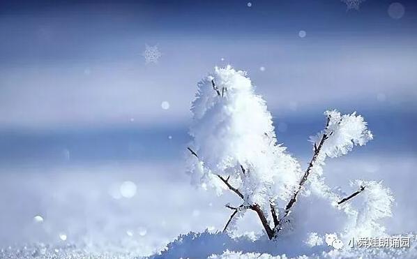 《小舜娃朗诵园》第四十九期——看诗人笔下的雪 听雪落下的声音
