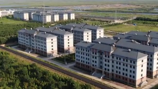 不止天津!天津一小区16栋楼住十万个骨灰盒,与普通居民区无异