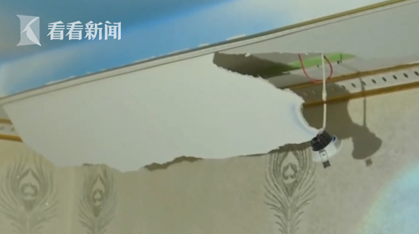 天花板掉下4米大蟒蛇 重达40斤已藏身10年