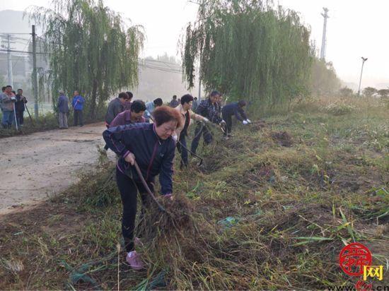 张夏街道:人居环境提升扮靓美丽乡村