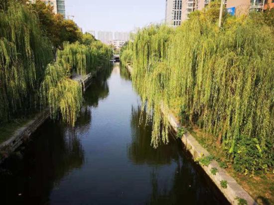 """天桥区水务服务中心整治河湖两岸  力推城市""""颜值""""提升"""