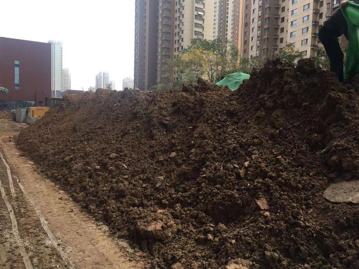 【啄木鸟在行动】济南锅炉辅机厂房建设项目 施工现场物料露天存放
