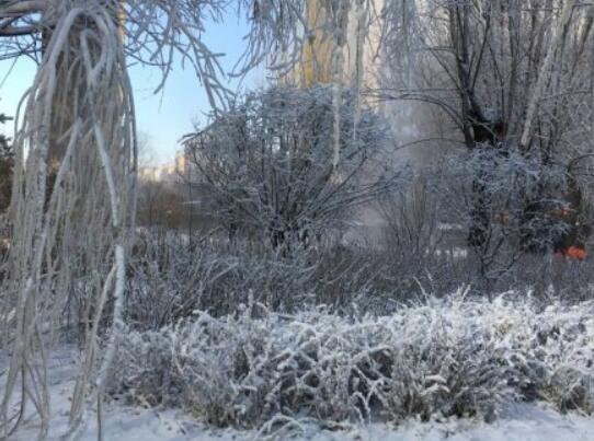 山西一小区为缓解干燥人工造雪 网友:如此优秀的小区,物业太硬核了!