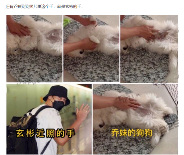 网友偶遇玄彬宋慧乔散步遛狗什么情况?终于真相了,原来是这样!