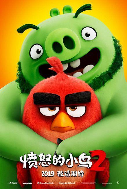 好期待!《愤怒的小鸟2》确认引进 十年经典猪鸟首度联手